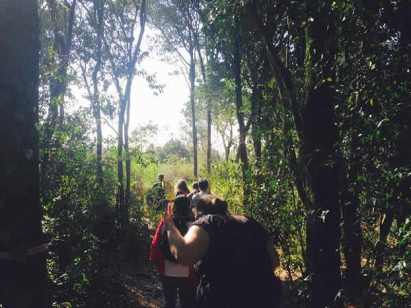 Vertente da Natureza