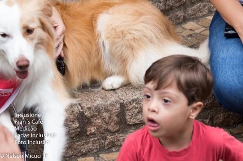 01/06/19 - Pet e Inclusão! Cães Terapêutas!
